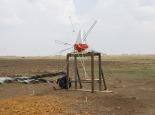 2012-windmill-scfood1_05