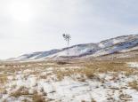 2014-windmill-zhayma1_19